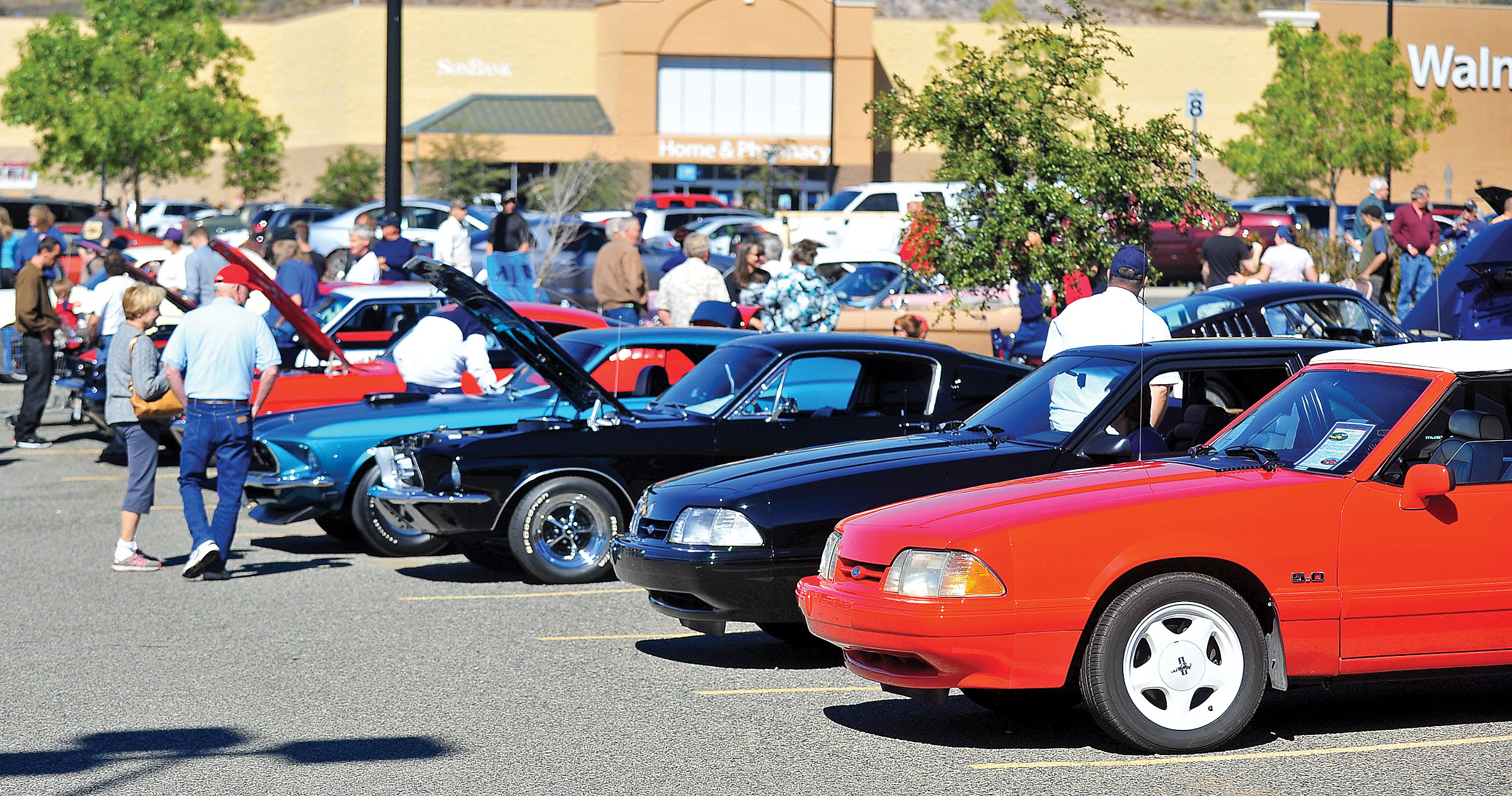 Mustangs Of All Ages And Conditions The Daily Courier Prescott AZ - Mustang car shows