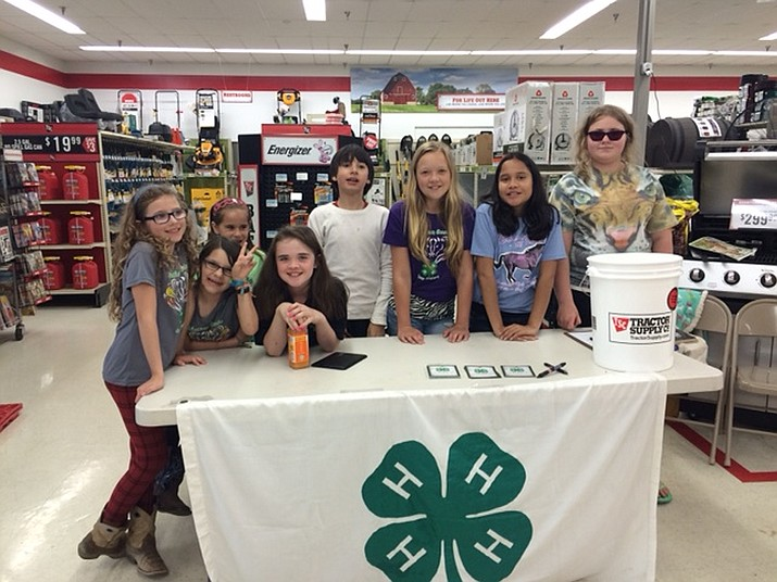 Members of the Chatham County, N. C., Low Riders 4-H Club participating at the 2015 Spring Paper Clover Campaign at the Siler City Tractor Supply Store.