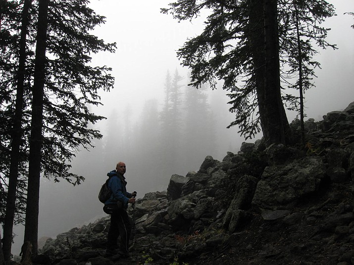 A hiker explores the trails near the San Francisco Peaks on an inclement day. (Ted Johnson/PV Public Library)