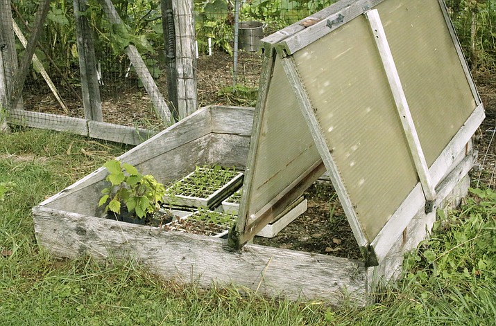 This undated photo shows a bi-fold coldframe in New Paltz, N.Y. Seedlings can keep warm and cozy even in cold weather when the bi-fold cover of this coldframe is closed to capture and hold the sun's warmth. (Lee Reich via AP)