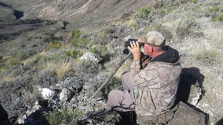 Outdoors Writer Don Martin is shown glassing into the Paiute Wilderness area near Ram Canyon on a recent scouting trip on the Arizona Strip.