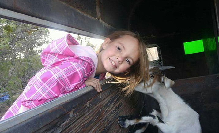Jaycee Blair tends to a goat donated to the Building Bridges Youth Farm in Flagstaff. Kira Blair and Williams resident Alyssa Dennison plan to open the farm to help at-risk youth in northern Arizona. Submitted photo