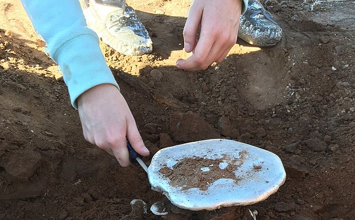 Science team's second attempt at ant hill recovery. (Photo courtesy Camp Verde Unified School District)