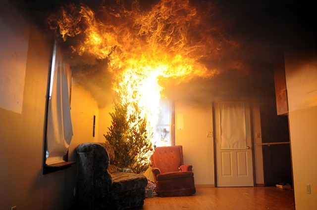 A Christmas tree goes up in flames during a fire drill.