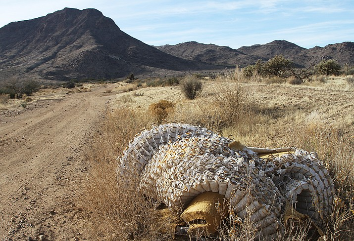 Mattresses and other trash litter the desert landscape north of town north and west of Mohave Community College with Bull Mountain in the background. County officials and residents are concerned with the vast amounts of trash illegally dumped in the surrounding desert.