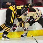 ASU's Anthony Croston and Brown's Zach Giuttari battle on the boards as the ASU Sun Devils take on the Brown Bears from Rhode Island in the Desert Hockey Classic at the Prescott Valley Event Center Friday, December 30. (Les Stukenberg/The Daily Courier)
