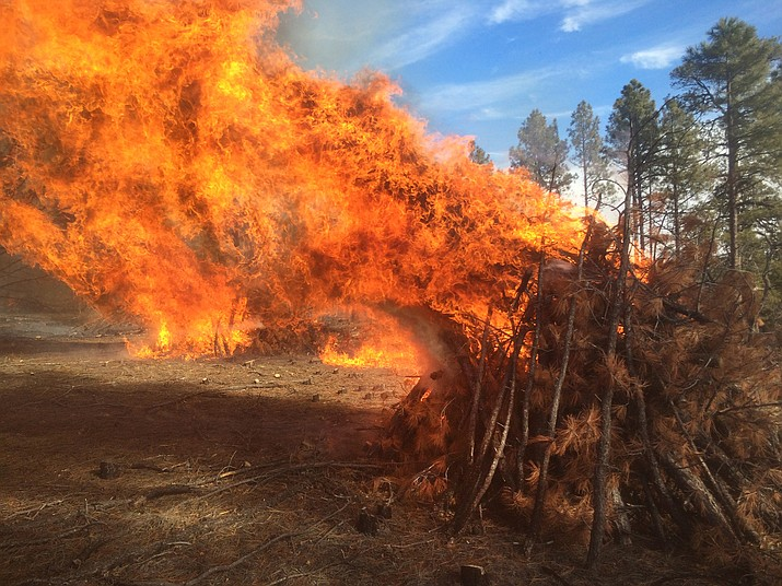 Flames bursts from a 2014 pile burning on the Tusayan Ranger District. These managed fires improve forest health and enhance wildlife habitat while reducing the fuels to prevent catastrophic wildfires.