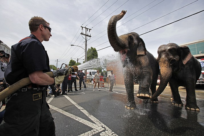 "In this May 13, 2009 file photo, Firefighter Eforrest Allmond houses down Asian Elephants from Ringling Bros. and Barnum & Bailey circus in Philadelphia. The Ringling Bros. and Barnum & Bailey Circus will end ""The Greatest Show on Earth"" in May, following a 146-year run of performances. Kenneth Feld, the chairman and CEO of Feld Entertainment, which owns the circus, told The Associated Press when the company removed the elephants from the shows in May of 2016, ticket sales declined more dramatically than expected."