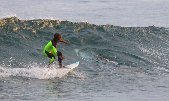 In this photo from Jan. 24, 2017, provided by Chris Hasson, 10-year-old Eden Hasson, Chris' son, surfs near what is believed to be a great white shark at Samurai Beach, Port Stephens, Australia. James Cook University shark researcher Andrew Chin says the photographed shark is possibly a small great white.