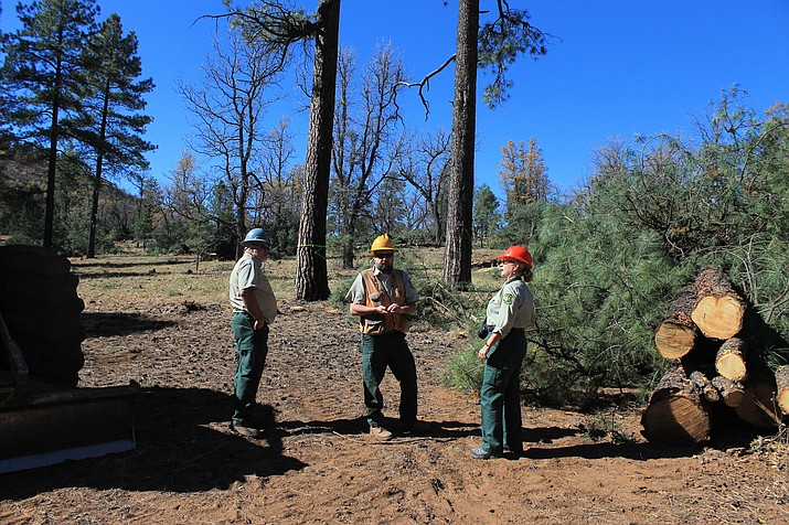 Forest managers discuss plans at a 4FRI project south of Williams in the fall of 2016.
