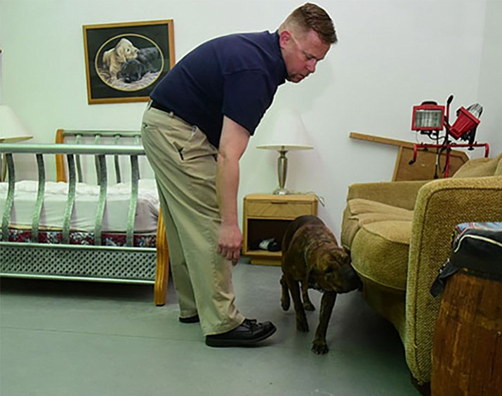 AZEX Pest Solutions Sonny Henegar and his bed bug detection dog Sonny demonstrate how they search for bed bugs at their Prescott training facility.