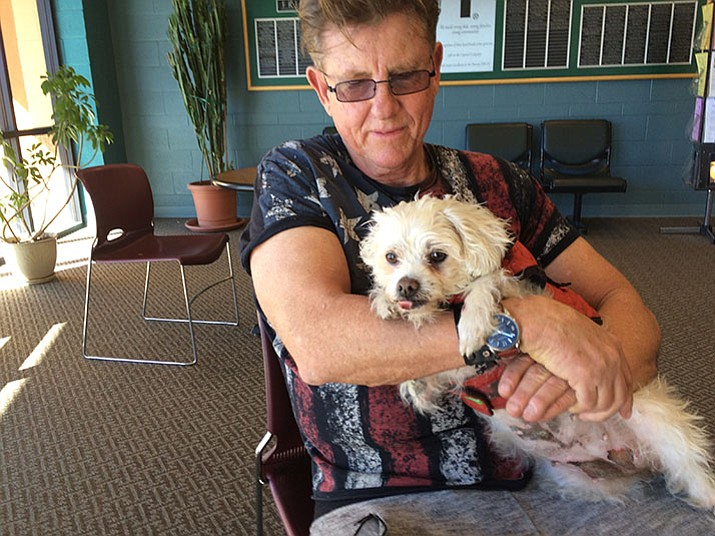 Steve Adams and his dog, Glory, recuperating from injuries suffered in accident on Feb. 11.
