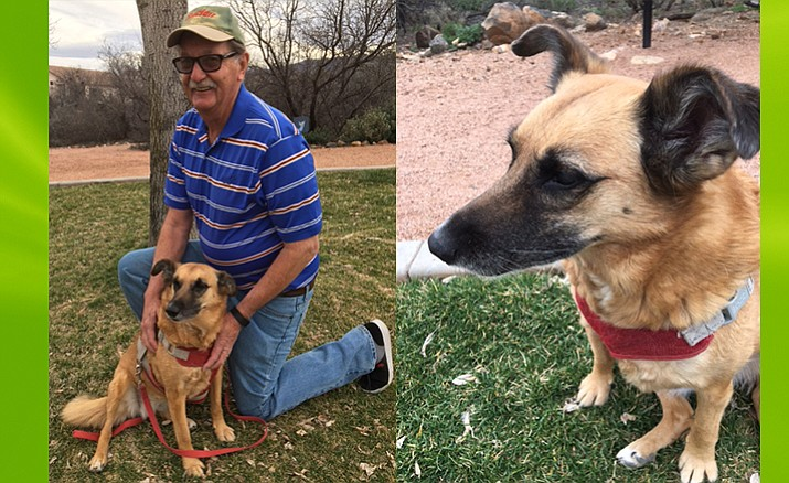 Bella (left with owner Loren), has made a cross-continent journey from Mozyr, Belarus, to find a home at last at Cottonwood Ranch. (Photos courtesy of Mary Nevans-Pederson)