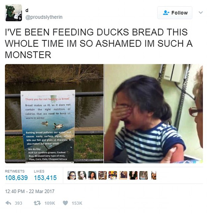 The photo of the park sign has been retweeted and shared by the tens of thousands, prompting many to express feelings of guilt at the revelation that what they have been doing could be killing ducks.