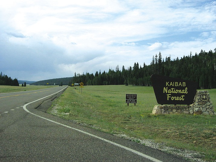 Kaibab National Forest consists of 1.2 million acres that borders both the north and south rims of the Grand Canyon.