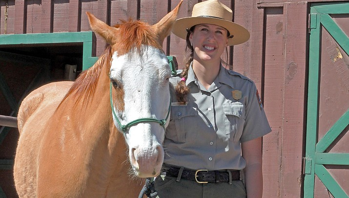 Horsing around: Grand Canyon patrol horses return from winter vacation
