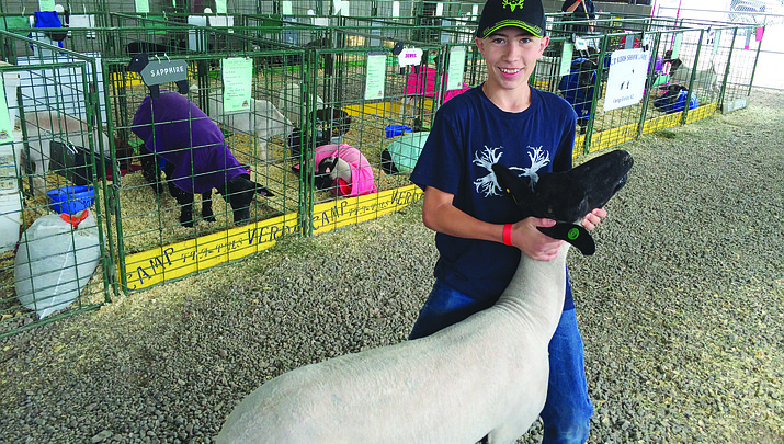 Verde Valley Fair Schedule of Events