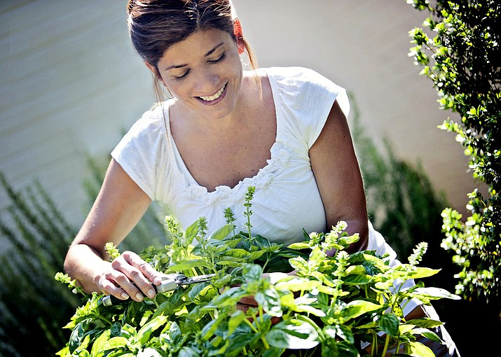 Preserving herbs from the garden provides fresh-from-the-garden flavor all year round.