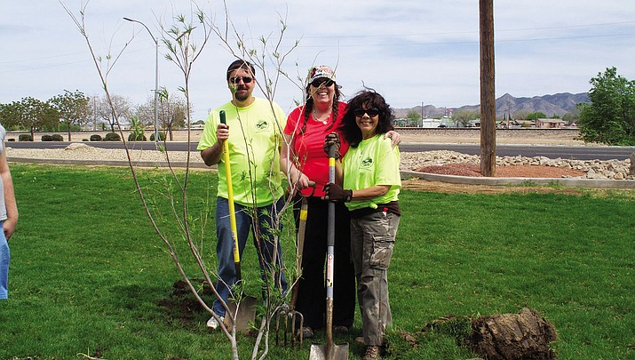 Kingman upholds 'Tree City USA' designation with planting at Metcalfe Park Saturday