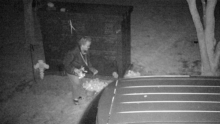 A flower shop owner is accused of stealing flowers from a New Jersey cemetery for months. Police installed surveillance cameras at the First Reformed Church Cemetery and captured images of Lynda S. Wingate, who is also a former police dispatcher.