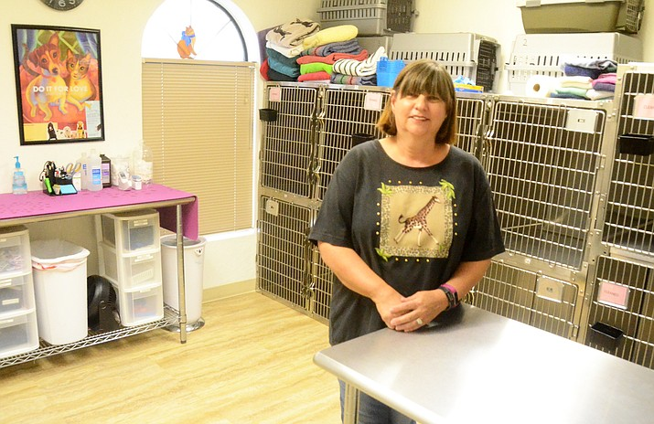 "The Morning Starr Animal Sanctuary Affordable Spay/Neuter Clinic has been named the Cottonwood Chamber Organization of the Year. Founder Fran Freedman's mission to help animals in the Verde Valley started years ago with a sanctuary that found homes for ""abandoned, abused and unwanted"" animals of all kinds. (Photo by Vyto Starinskas)"