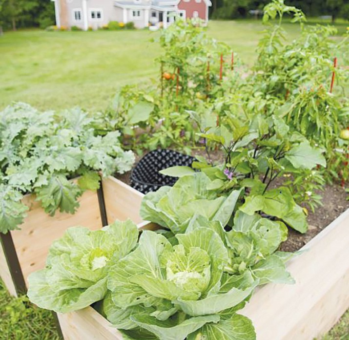 The keyhole gardening technique allows you to grow abundant produce and compost plant-based kitchen scraps in one raised garden plot. (Courtesy/Gardeners Supply Company)