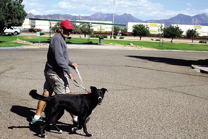 Bob Marco walks Stella Tuesday at Lewis Kingman Park with the Hualapai Mountains in the background. 'Howlin' in the Hualapais' is a dog-focused festival that is set for 10 a.m. to 6 p.m. Saturday at Hualapai Mountain Park Area 1.