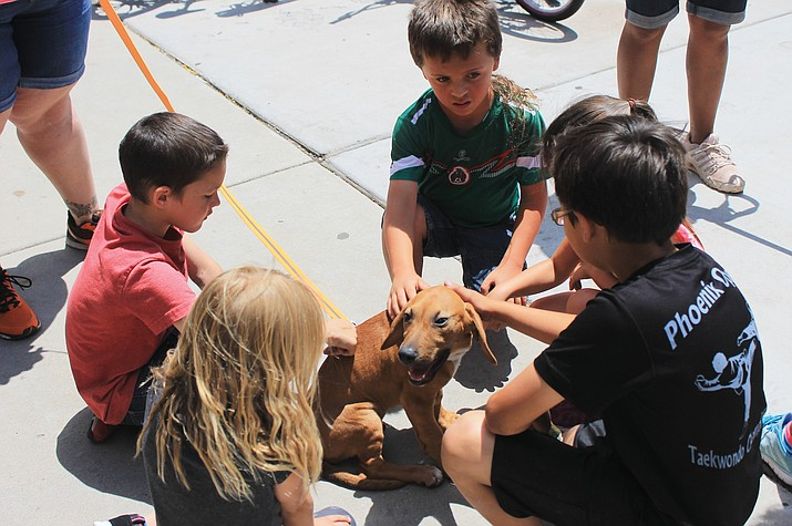 Summer Rec participants gather around a dog during the 2016 Pets on Parade.