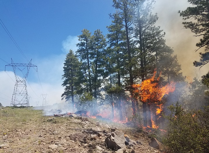 The Snake Ridge fire northwest of Clint Wells, AZ was started by lightning. The USFS is managing the fire and allowing it to burn for forest restoration.