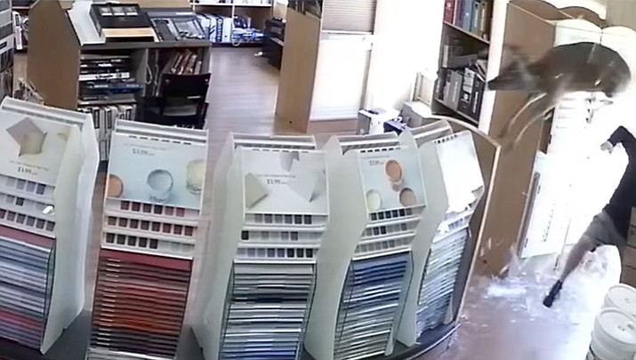 A deer jumps through a glass window at a paint store in Mt Pocono, Pa and nearly collides with an employee who is waiting on a customer. The deer then walked through the store and out the front door.