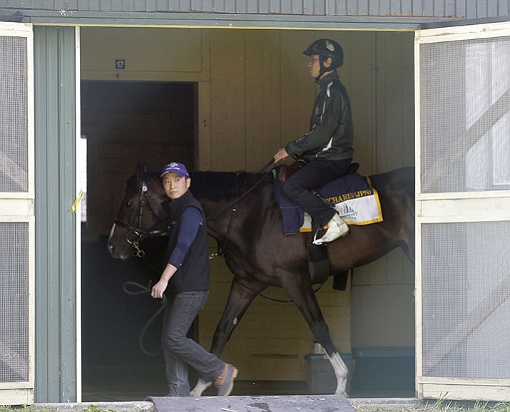Belmont Stakes hopeful Epicharis walks in his barn at Belmont Park, Friday, June 9, in Elmont, N.Y. Epicharis, is expected to run in 149th Belmont Stakes horse race on Saturday.