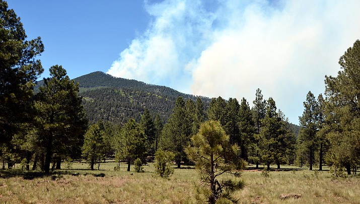 Coconino County joins Coconino National Forest with Stage 2 fire restrictions