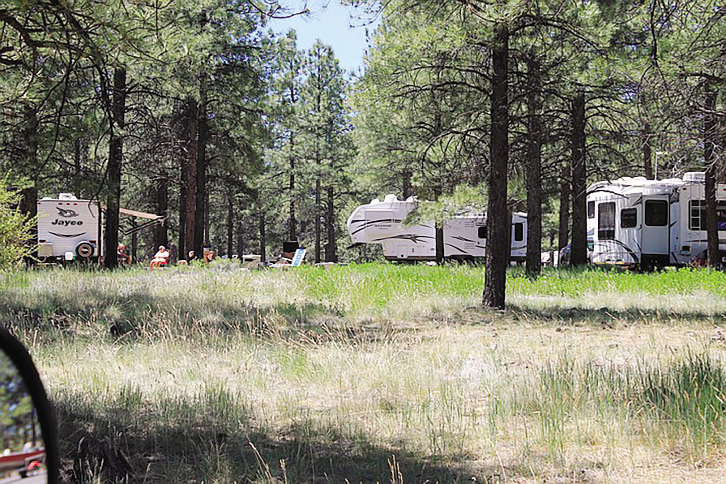 Northern Arizona Campgrounds Report Unusually High