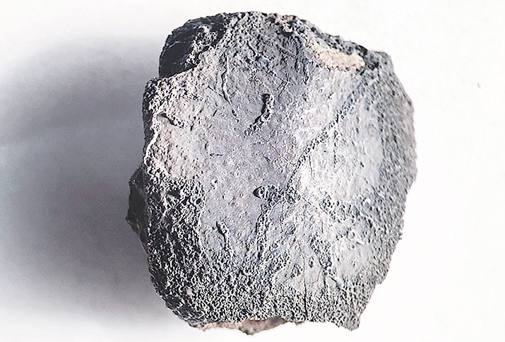 "The first Arizona meteorite fall to bear an indigenous name is being studied by ASU researchers who were fortunate enough to find fragments mere days after they started searching. Some of the meteorite fragments in the center's collection ""sit in the desert for hundreds of thousands of years."""