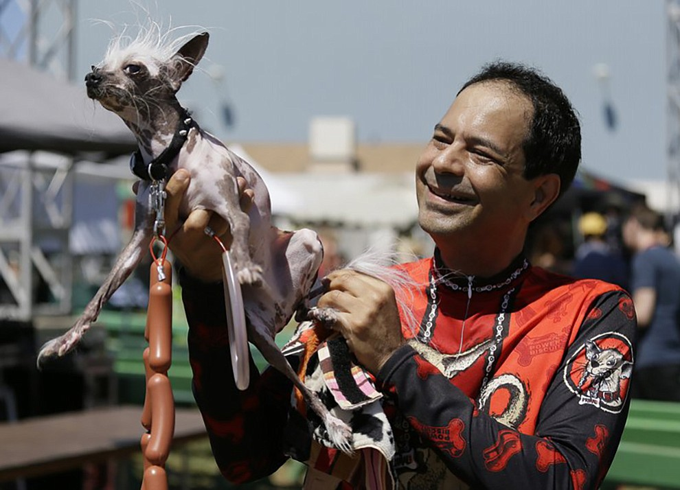 Dane Andrew of Sunnyvale, Calif., holds up his dog, Rascal, a Chinese crested, before the start of the World's Ugliest Dog Contest at the Sonoma-Marin Fair Friday, June 23, 2017, in Petaluma, Calif. (AP Photo/Eric Risberg)