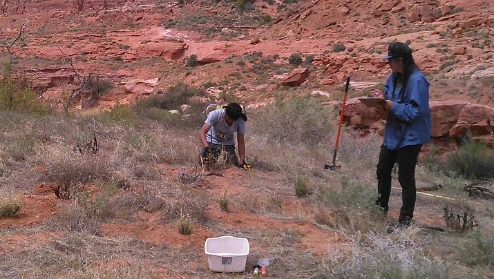 Ka-Voka Jackson, far right, records progress made by UNLV ecology students in removing invasive Ravenna grass from Glen Canyon National Park as part of her master's degree project.