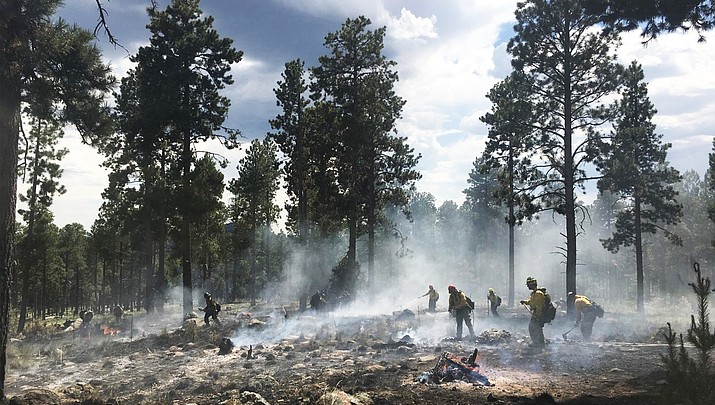 Coconino National Forest implements Stage 2 fire restrictions