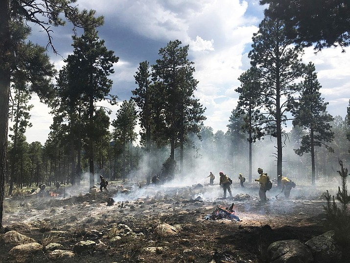 Firefighters work the Freidline Fire, a human caused wildfire on the Coconino National Forest near Flagstaff.