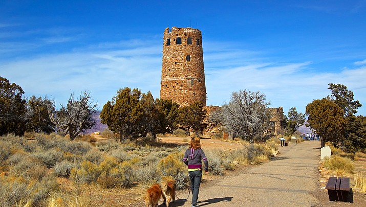 Grand Canyon is dog-friendly, but beware the heat