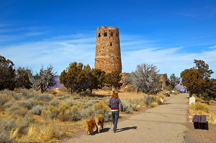 Visitors can explore with their pets at Desert View and other areas on the South Rim of the Grand Canyon.