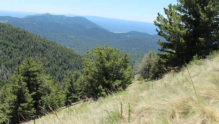 Out and about: Flagstaff's Weatherford Trail offers views topping off at 12,633 feet