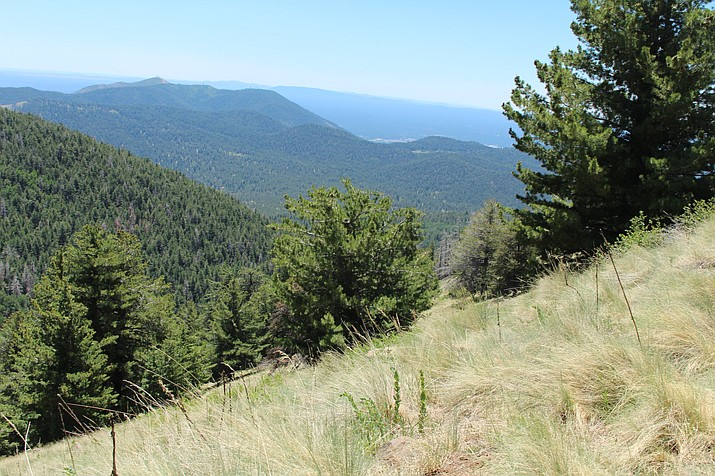 Surrounding mountains on the Weatherford Trail offer breathtaking views.