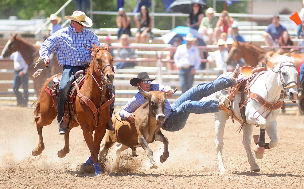 Denton Peterson has an 8.7 second run in the steeer wrestling during the 4th performance of the 2017 Prescott Frontier Days Rodeo at the Prescott Rodeo Grounds Saturday, July 1.  (Les Stukenberg/Courier)