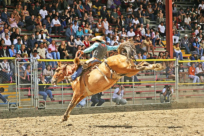 Kaila Mussell of British Columbia, Canada, first woman to earn a PRCA card, competes in saddle bronc riding. (Heidi M. Thomas/Courtesy)