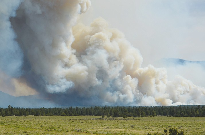 Smoke billows into the atmosphere during the Boundary Fire near Flagstaff in June of 2017.