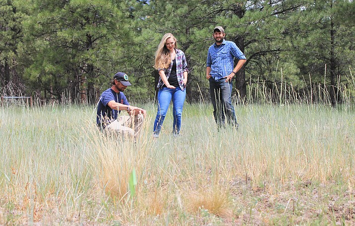 Justin Schofer, Victoria Payne and Travis Largent of Kaibab National Forest look over the location of a possible pond for northern leopard frogs on the Williams Ranger District.