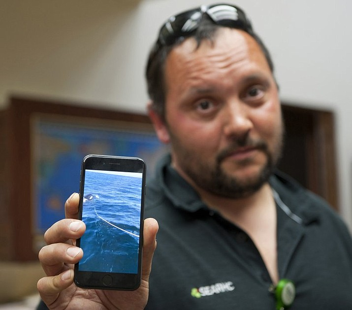 Victor Littlefield holds up a cellphone video of an orca whale pulling a line off his boat near Sitka, Alaska. Littlefield says his boat was attacked by an orca during a fishing excursion with his 14-year-old son and two others. (James Poulson/The Daily Sitka Sentinel via AP)