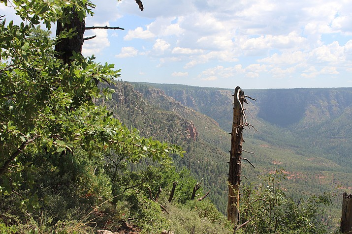 The Mogollon Rim has hiking trails for experienced and novice hikers. Trails offer breathtaking views of the rim and some of Arizona's beautiful high country. Stan Bindell/NHO