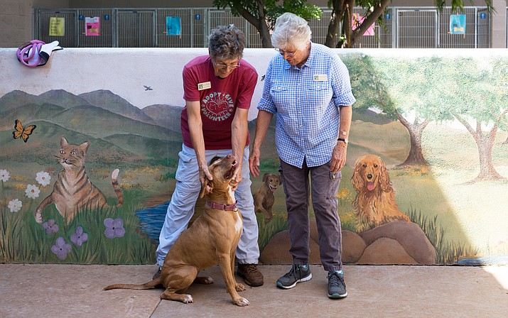 Sandy Finterwalder (left) and Peggy Taunton (right) take Hazie (bottom) to the courtyard for some play time at the Verde Valley Humane Society Aug. 1. Hazie has been at the Humane Society since October. (Photo by Halie Chavez)