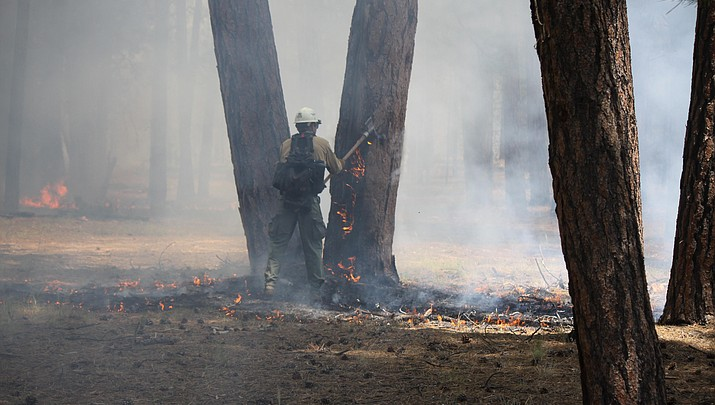 North Rim fire managers perform aerial ignitions in Pine Hollow fire
